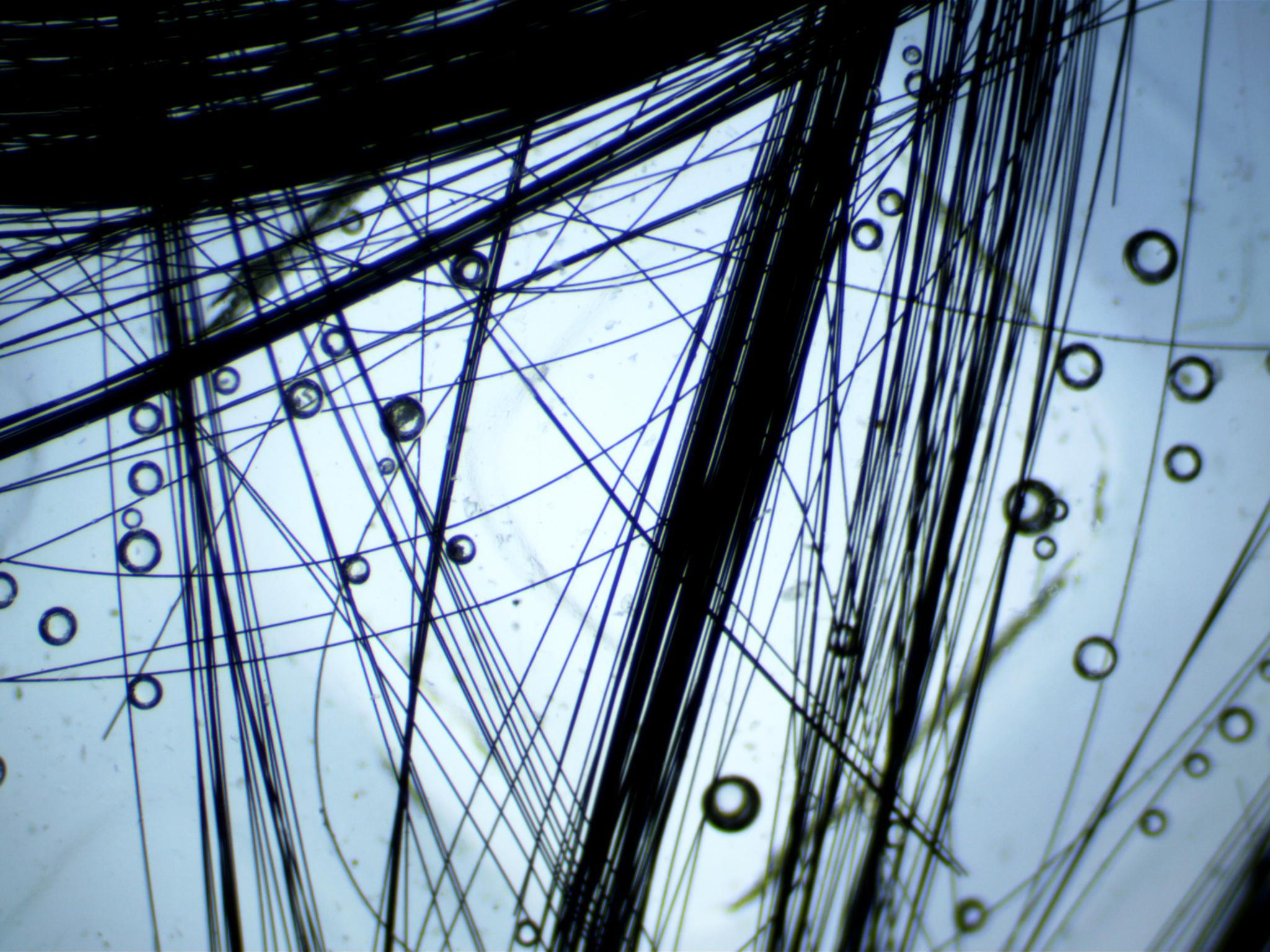 Carbon fiber under a microscope